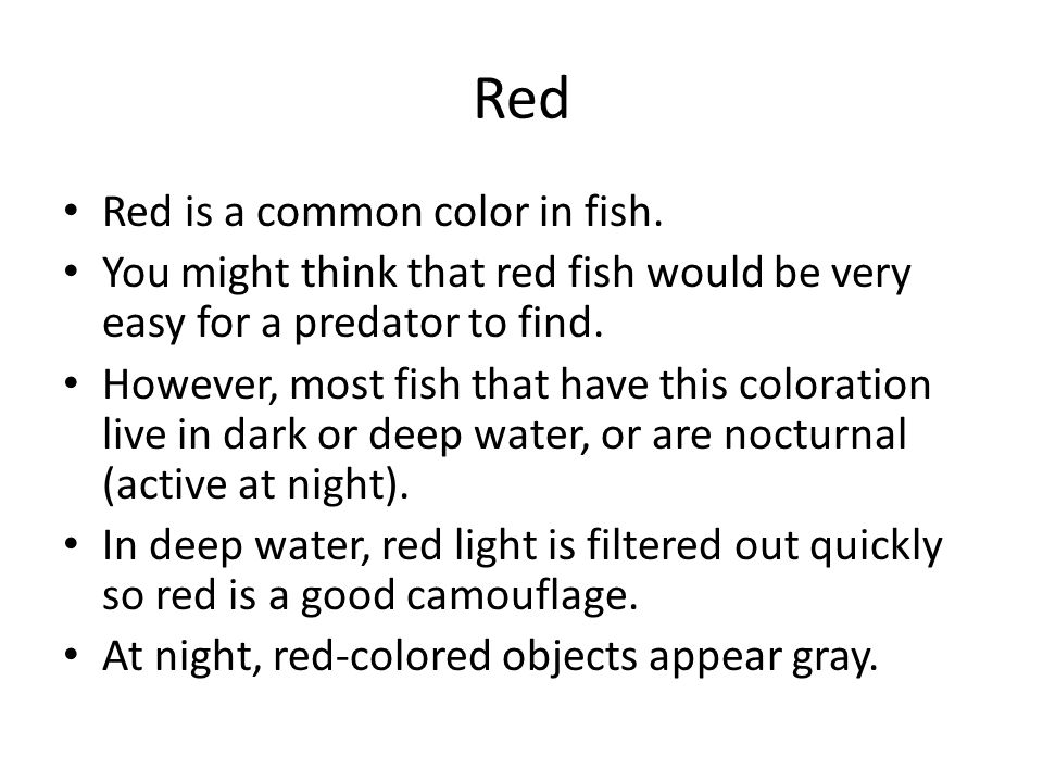 Red Red is a common color in fish. You might think that red fish would be very easy for a predator to find. However, most fish that have this colorati