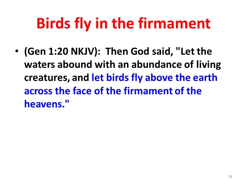 Birds fly in the firmament (Gen 1:20 NKJV): Then God said,