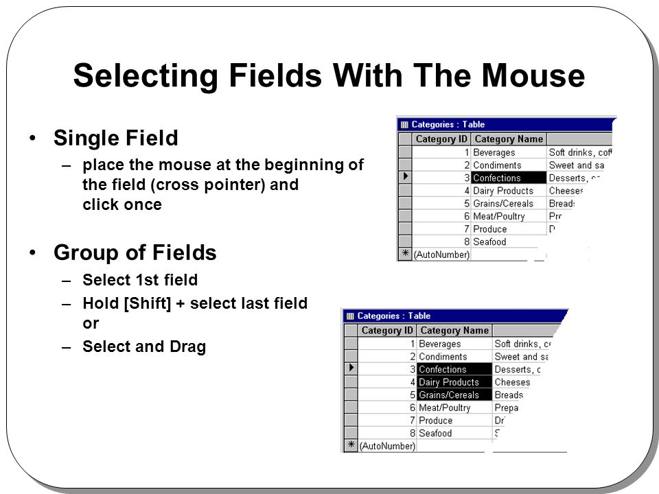 Selecting Fields With The Mouse Single Field –place the mouse at the beginning of the field (cross pointer) and click once Group of Fields –Select 1st field –Hold [Shift] + select last field or –Select and Drag