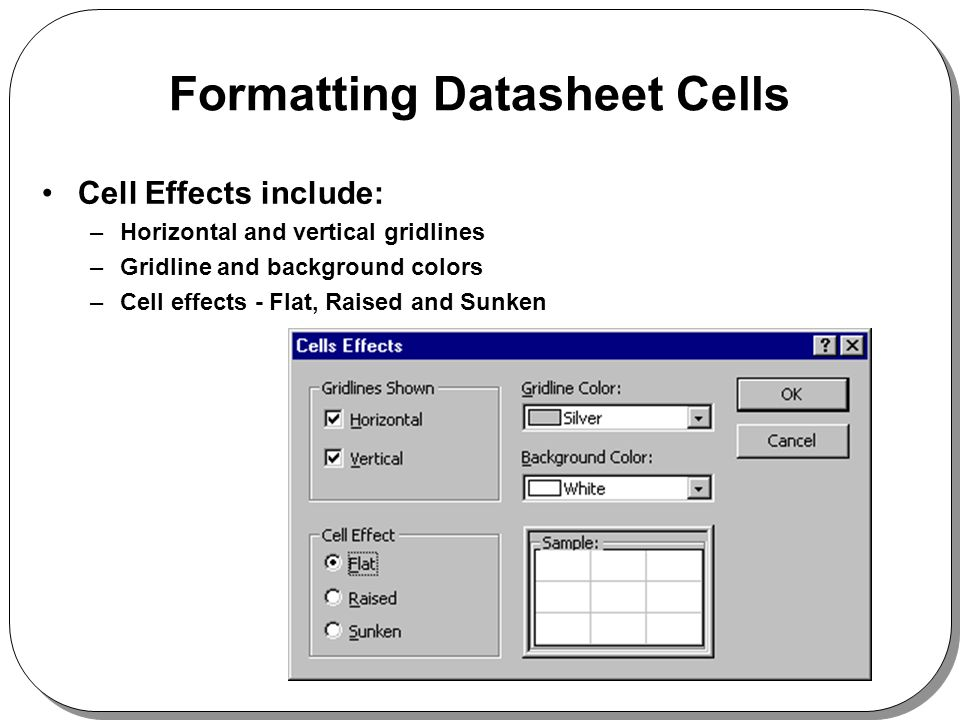 Formatting Datasheet Cells Cell Effects include: –Horizontal and vertical gridlines –Gridline and background colors –Cell effects - Flat, Raised and S