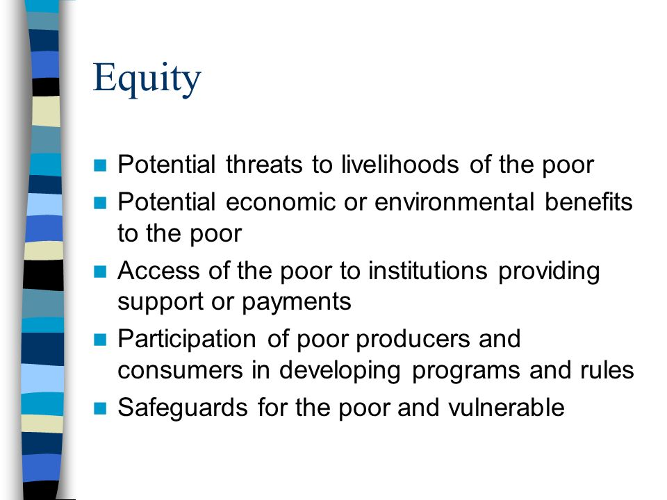 Equity Potential threats to livelihoods of the poor Potential economic or environmental benefits to the poor Access of the poor to institutions providing support or payments Participation of poor producers and consumers in developing programs and rules Safeguards for the poor and vulnerable