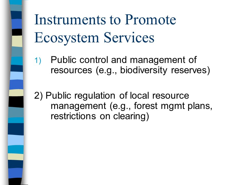 Instruments to Promote Ecosystem Services 1) Public control and management of resources (e.g., biodiversity reserves) 2) Public regulation of local resource management (e.g., forest mgmt plans, restrictions on clearing)