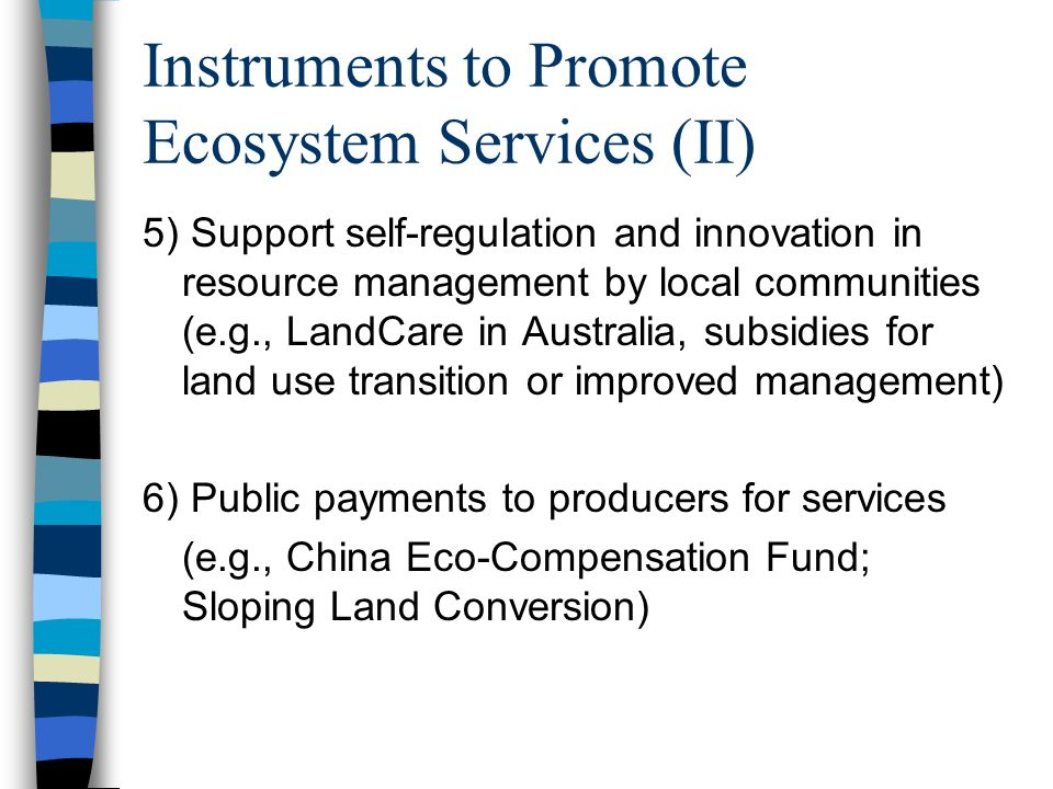 Instruments to Promote Ecosystem Services (II) 5) Support self-regulation and innovation in resource management by local communities (e.g., LandCare in Australia, subsidies for land use transition or improved management) 6) Public payments to producers for services (e.g., China Eco-Compensation Fund; Sloping Land Conversion)