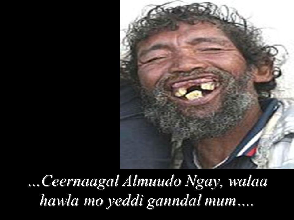 …Ceernaagal Almuudo Ngay, walaa hawla mo yeddi ganndal mum….