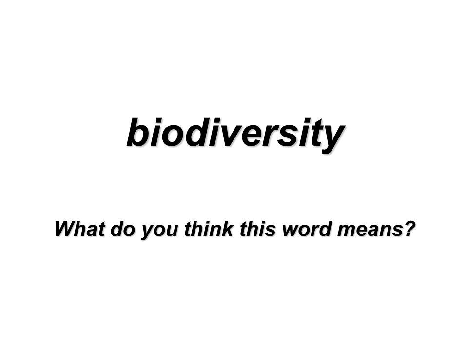 biodiversity What do you think this word means?