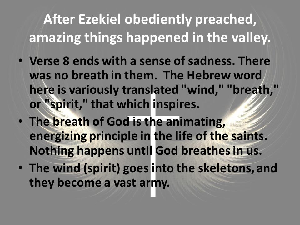 After Ezekiel obediently preached, amazing things happened in the valley. Verse 8 ends with a sense of sadness. There was no breath in them. The Hebre