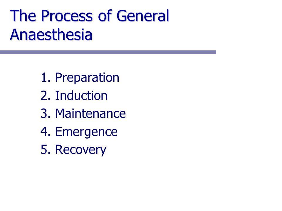 1. Preparation 2. Induction 3. Maintenance 4. Emergence 5. Recovery