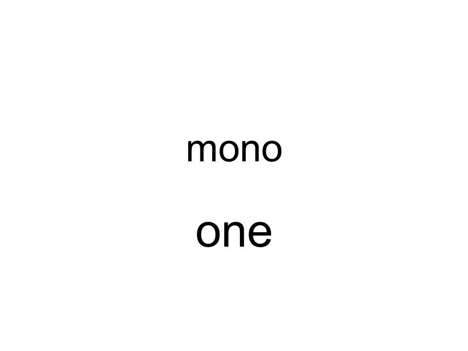 mono one