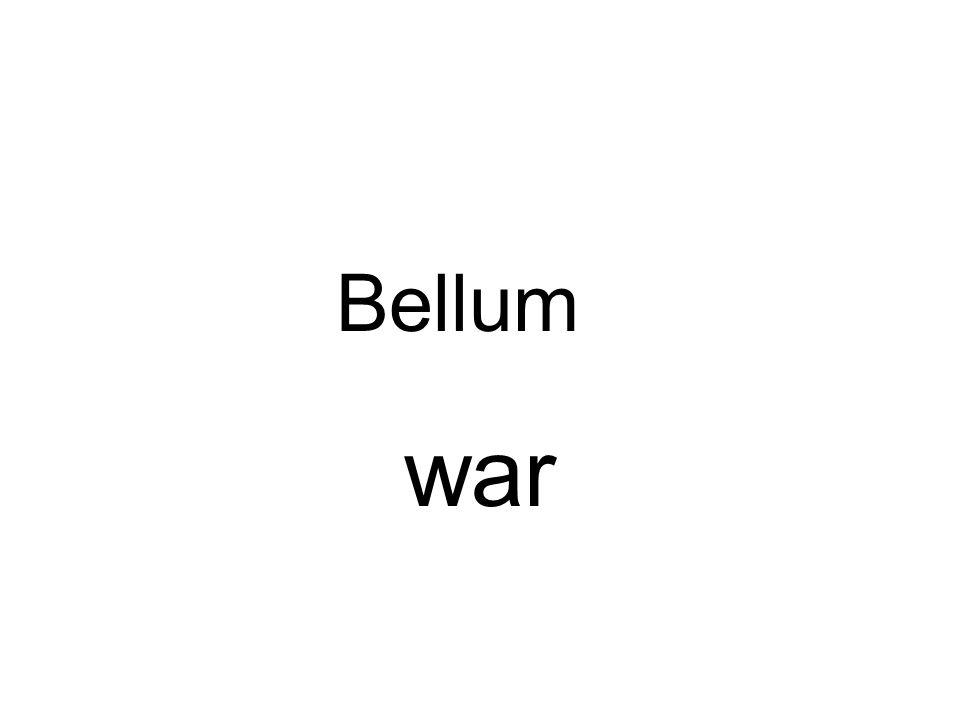 Bellum war