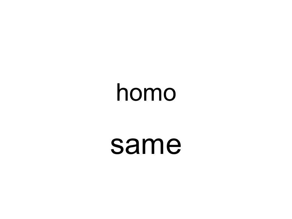 homo same