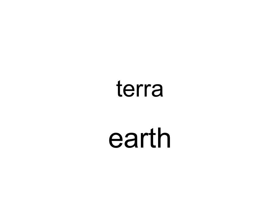 terra earth