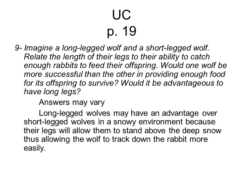 UC p. 19 9- Imagine a long-legged wolf and a short-legged wolf. Relate the length of their legs to their ability to catch enough rabbits to feed their