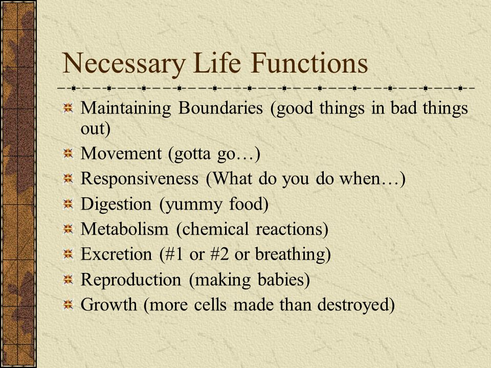 Necessary Life Functions Maintaining Boundaries (good things in bad things out) Movement (gotta go…) Responsiveness (What do you do when…) Digestion (