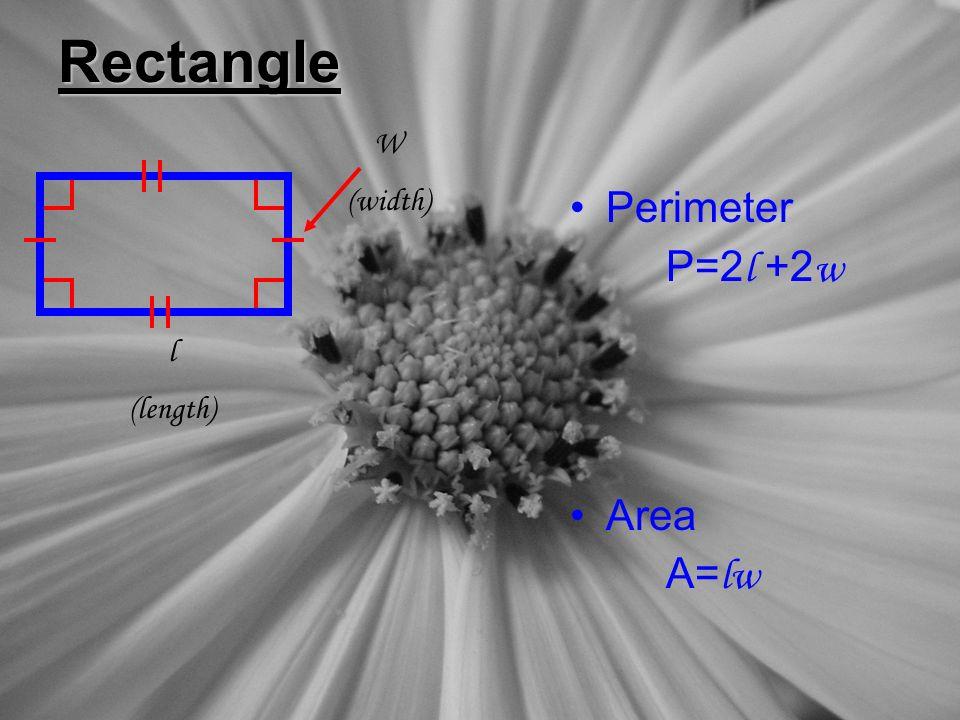 Rectangle Perimeter P=2 l +2 w Area A= lw l (length) W (width)
