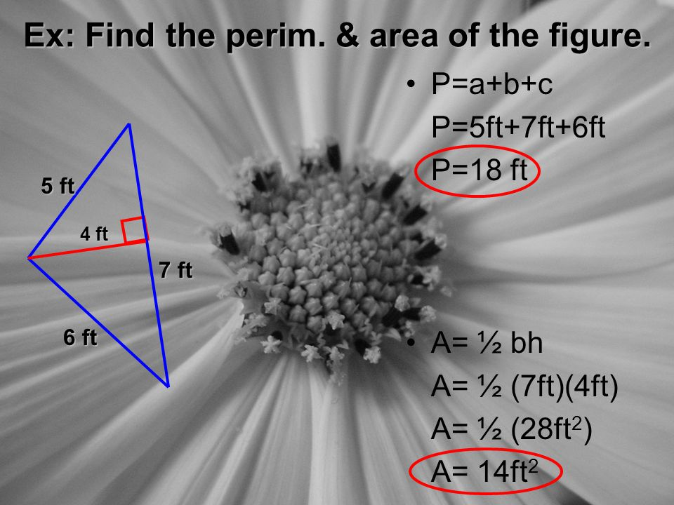 Ex: Find the perim. & area of the figure.