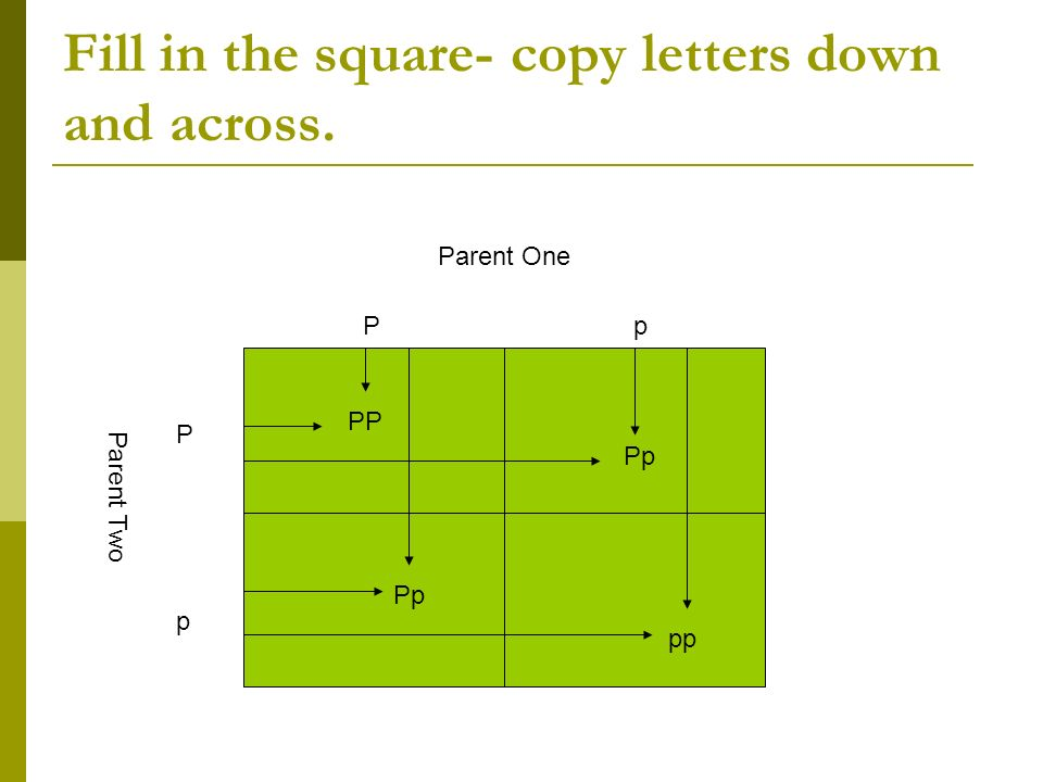 Fill in the square- copy letters down and across. P p PpPp Parent One Parent Two PP Pp pp