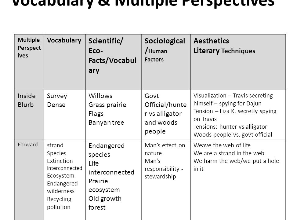 Vocabulary & Multiple Perspectives Multiple Perspect ives Vocabulary Scientific/ Eco- Facts/Vocabul ary Sociological / Human Factors Aesthetics Litera