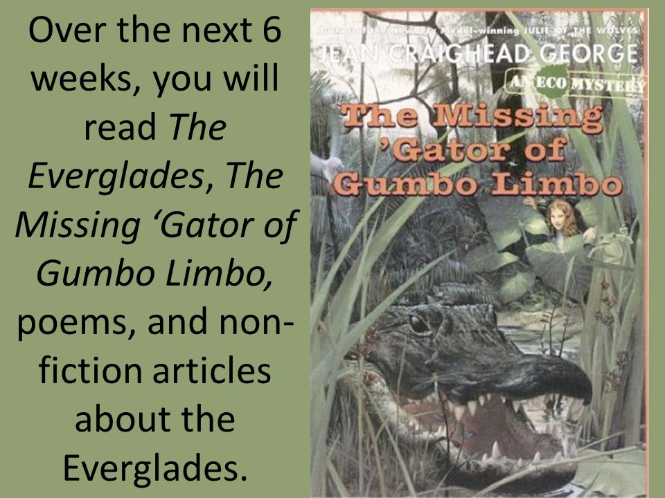 Over the next 6 weeks, you will read The Everglades, The Missing Gator of Gumbo Limbo, poems, and non- fiction articles about the Everglades.