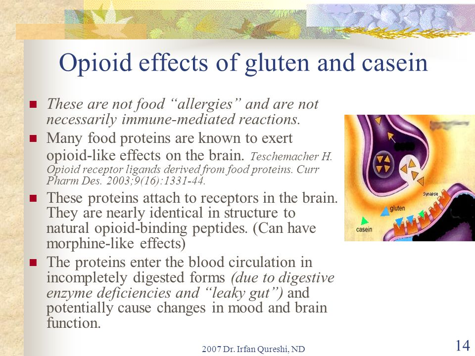 2007 Dr. Irfan Qureshi, ND 14 Opioid effects of gluten and casein These are not food allergies and are not necessarily immune-mediated reactions. Many