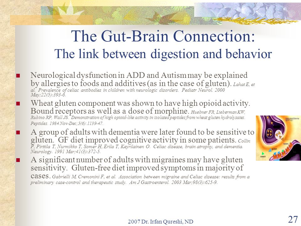 2007 Dr. Irfan Qureshi, ND 27 The Gut-Brain Connection: The link between digestion and behavior Neurological dysfunction in ADD and Autism may be expl