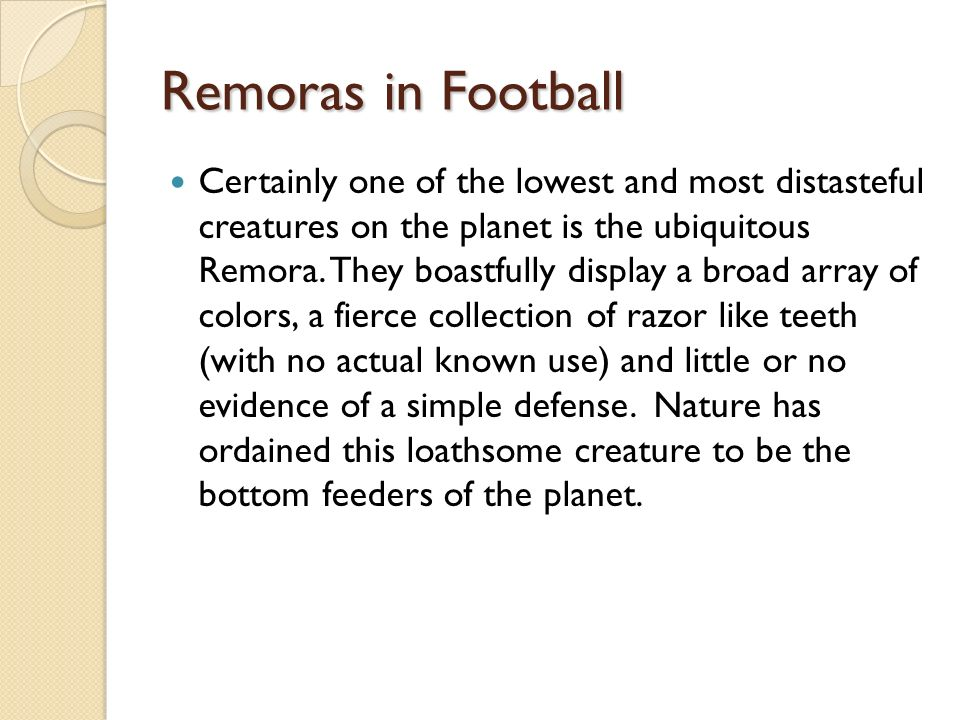 Remoras in Football Certainly one of the lowest and most distasteful creatures on the planet is the ubiquitous Remora. They boastfully display a broad