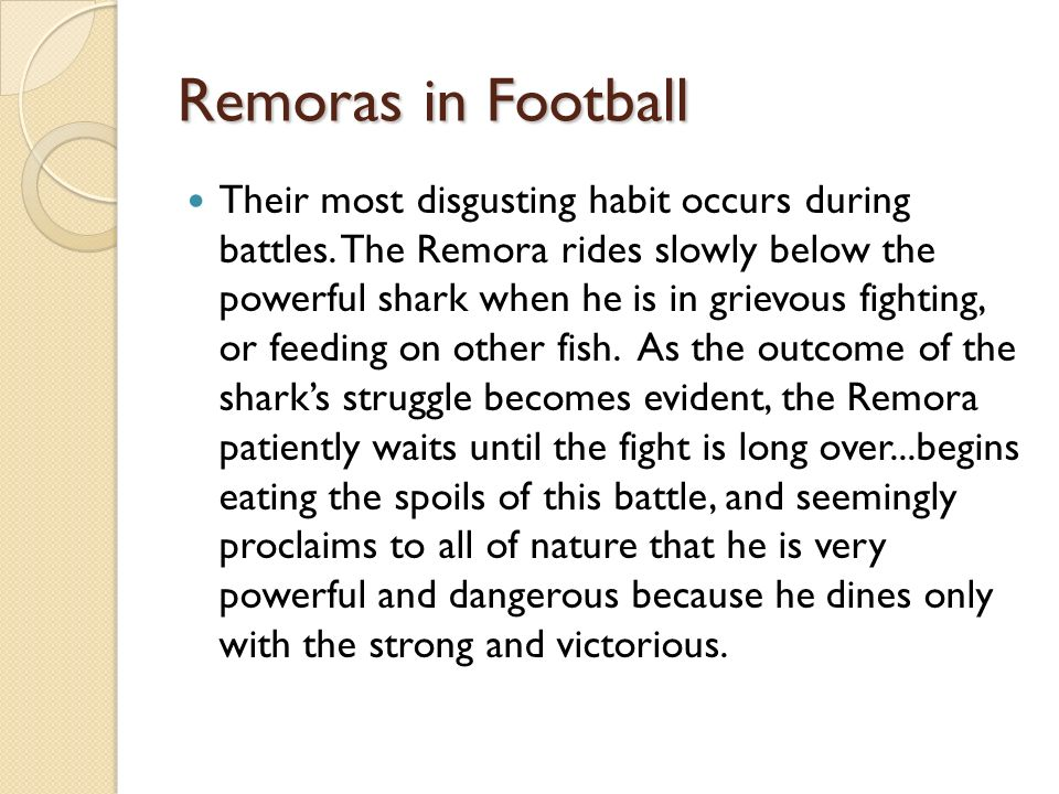 Remoras in Football Their most disgusting habit occurs during battles. The Remora rides slowly below the powerful shark when he is in grievous fightin