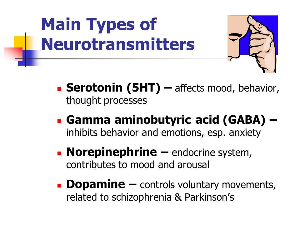 Main Types of Neurotransmitters Serotonin (5HT) – affects mood, behavior, thought processes Gamma aminobutyric acid (GABA) – inhibits behavior and emo