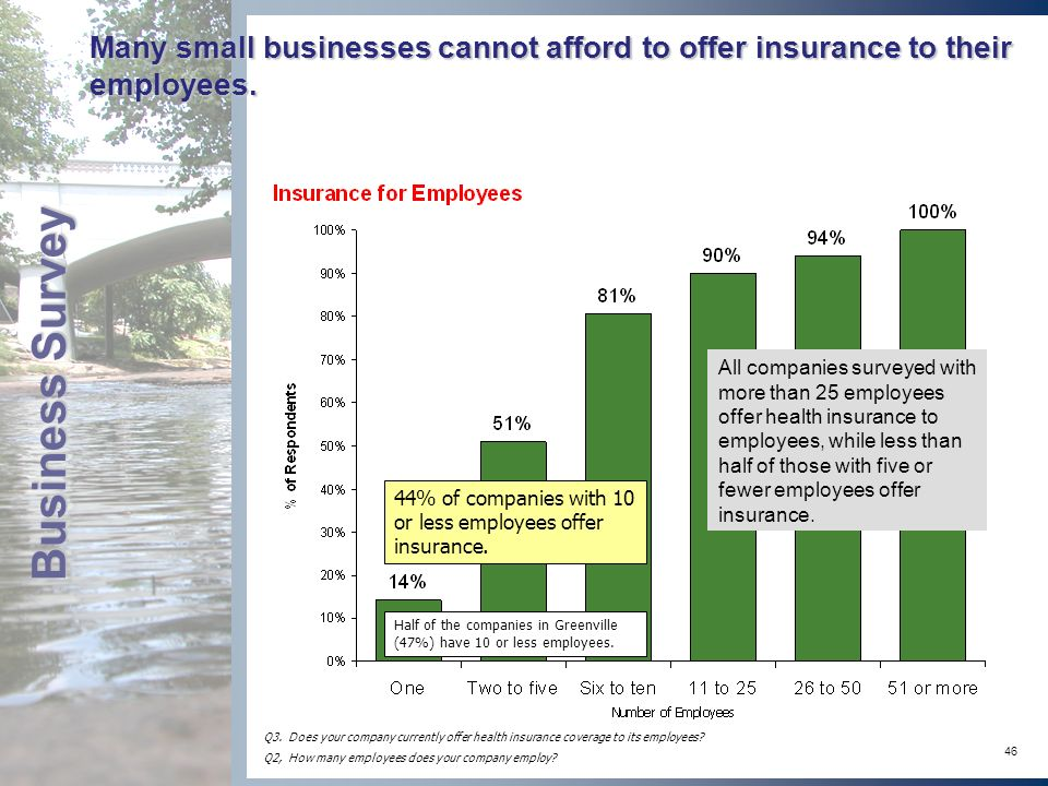 46 Many small businesses cannot afford to offer insurance to their employees.