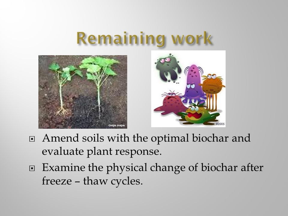 Amend soils with the optimal biochar and evaluate plant response. Examine the physical change of biochar after freeze – thaw cycles. Google images