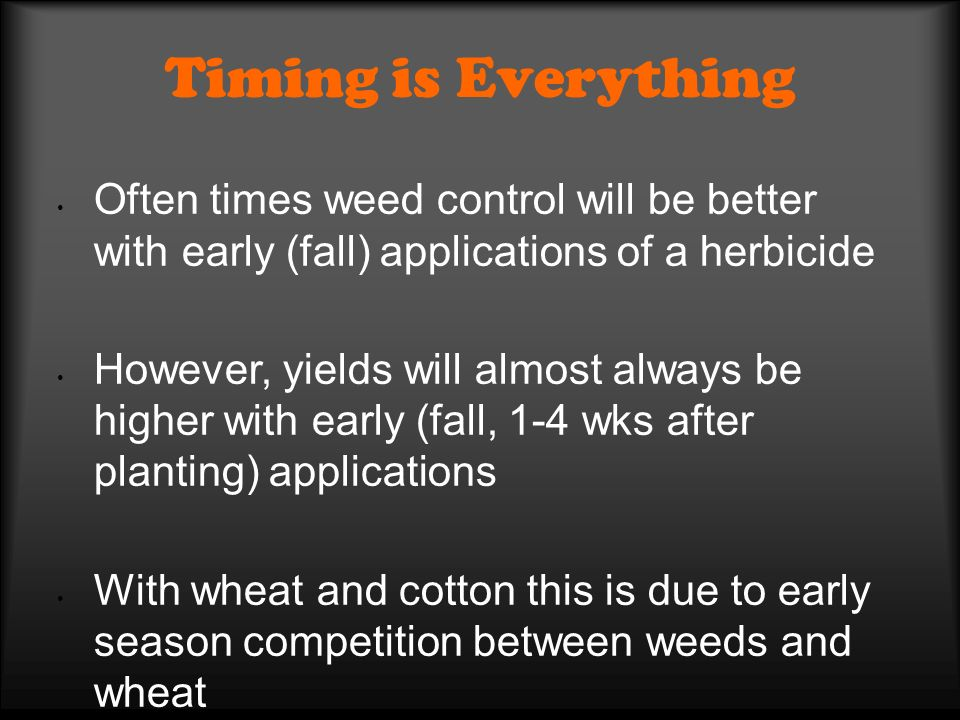 Timing is Everything Often times weed control will be better with early (fall) applications of a herbicide However, yields will almost always be highe
