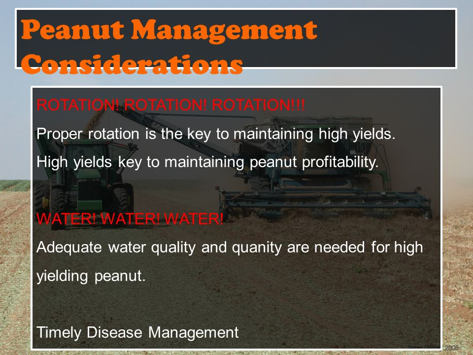 Peanut Management Considerations ROTATION.ROTATION.