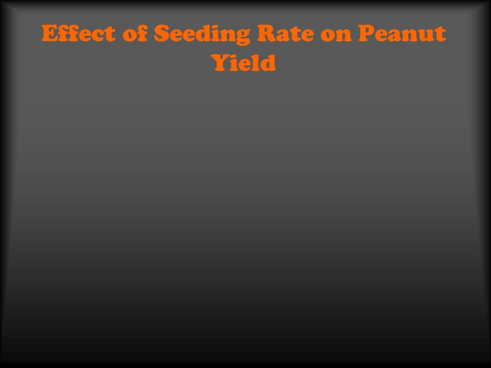 Effect of Seeding Rate on Peanut Yield