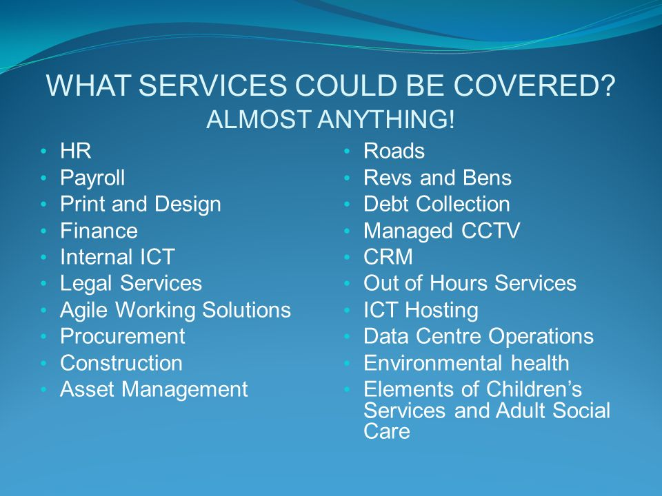 WHAT SERVICES COULD BE COVERED. ALMOST ANYTHING.