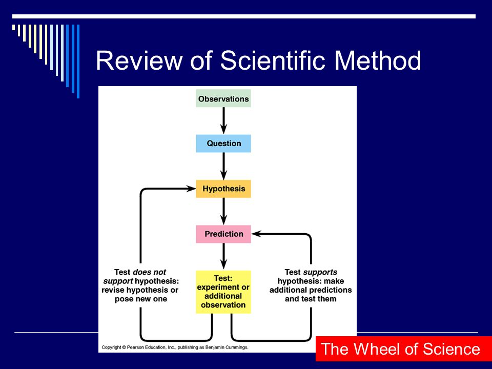 Review of Scientific Method The Wheel of Science