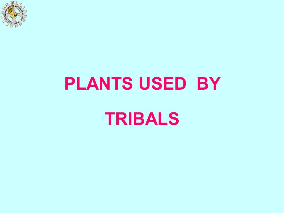 PLANTS USED BY TRIBALS