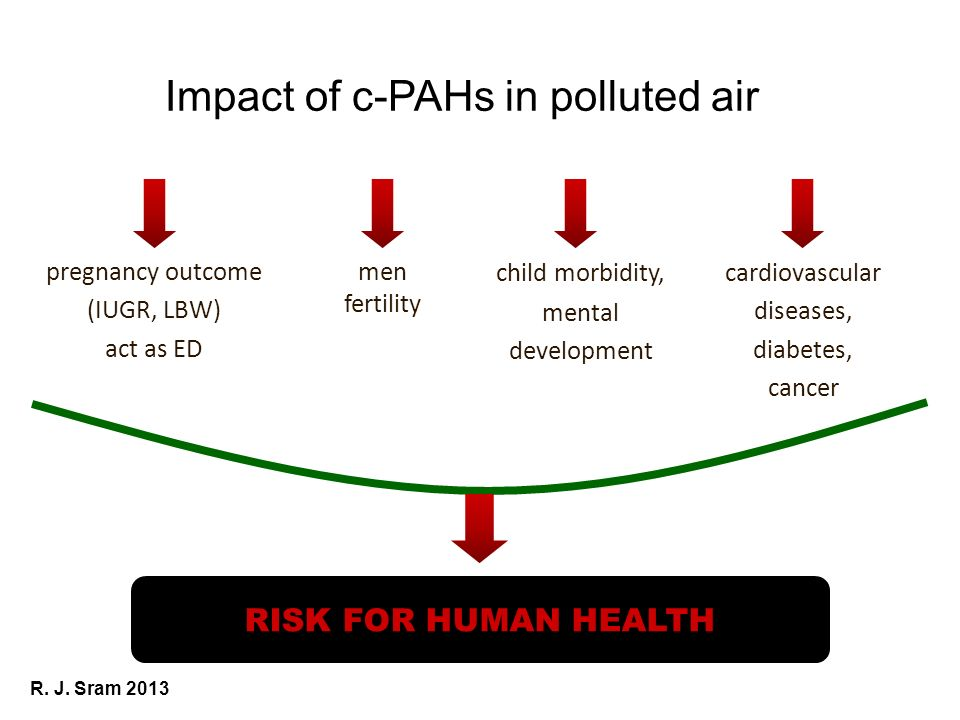 RISK FOR HUMAN HEALTH pregnancy outcome (IUGR, LBW) act as ED child morbidity, mental development men fertility cardiovascular diseases, diabetes, cancer R.