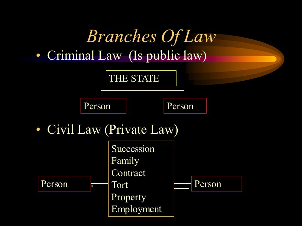 Branches Of Law Criminal Law (Is public law) Civil Law (Private Law) THE STATE Person Succession Family Contract Tort Property Employment Person