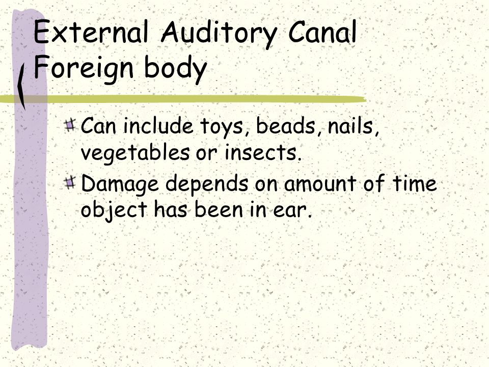 External Auditory Canal Foreign body Can include toys, beads, nails, vegetables or insects. Damage depends on amount of time object has been in ear.