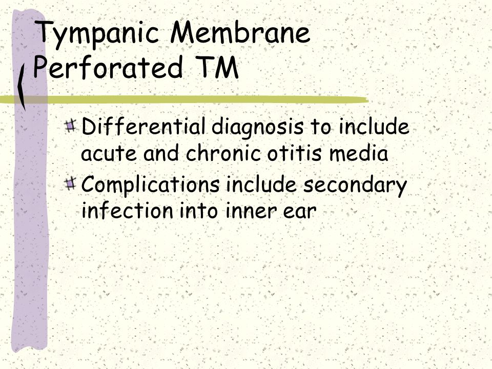 Tympanic Membrane Perforated TM Differential diagnosis to include acute and chronic otitis media Complications include secondary infection into inner