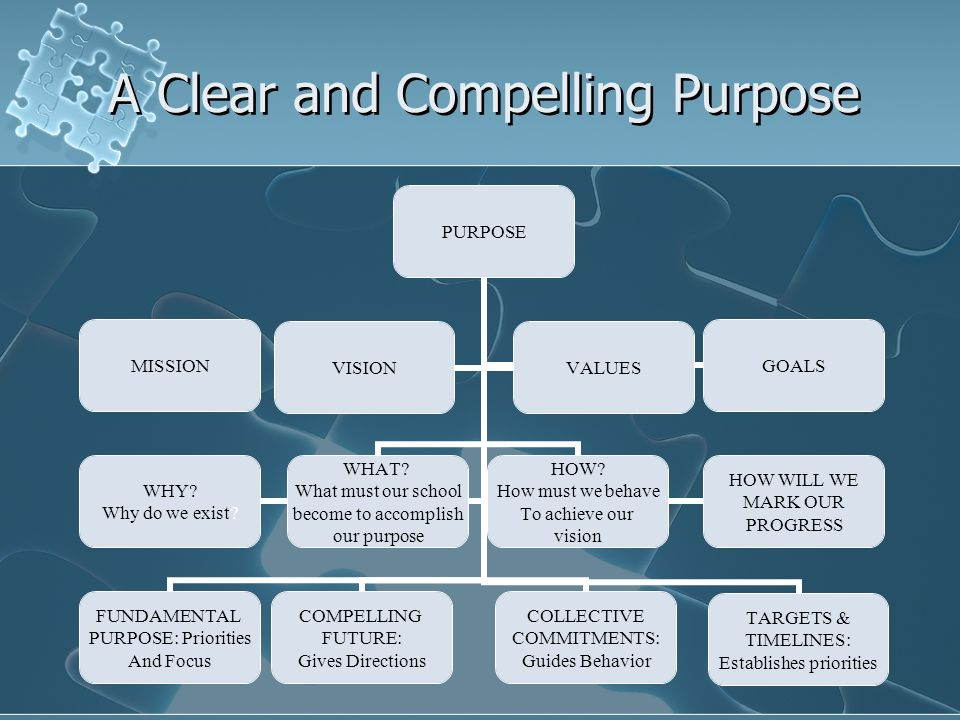 A Clear and Compelling Purpose MISSION