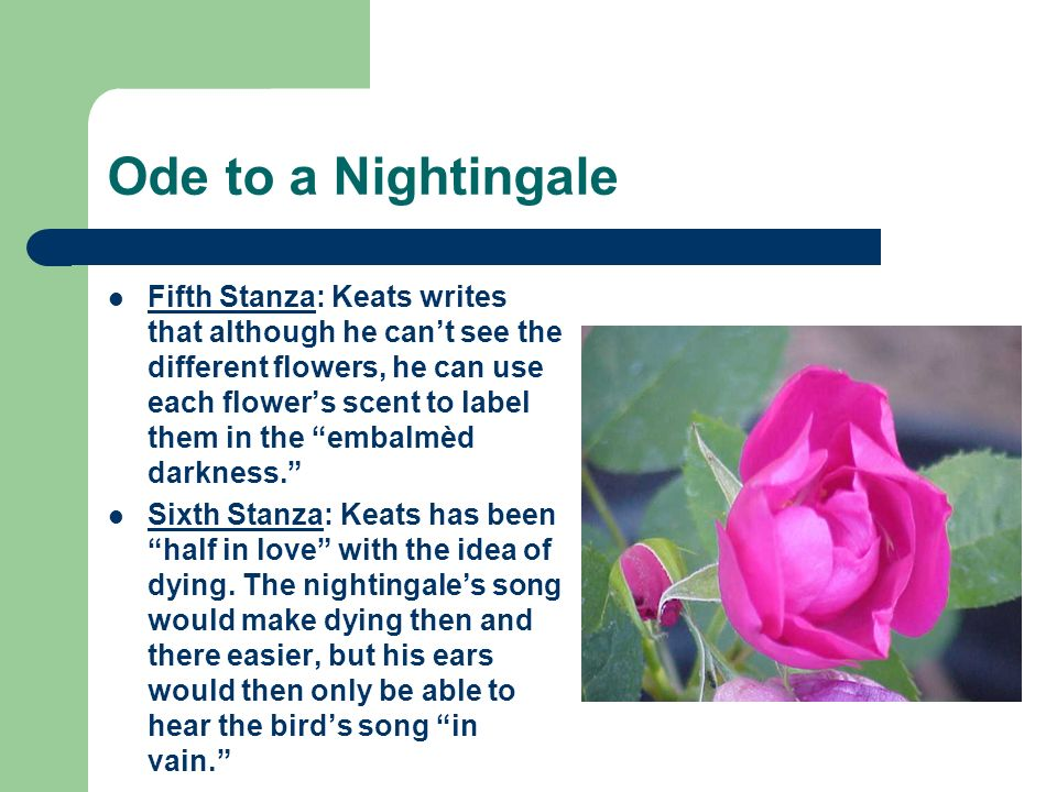 Ode to a Nightingale Seventh Stanza: Keats comments on the birds immortality, saying it sang for emperors [i]n ancient days.