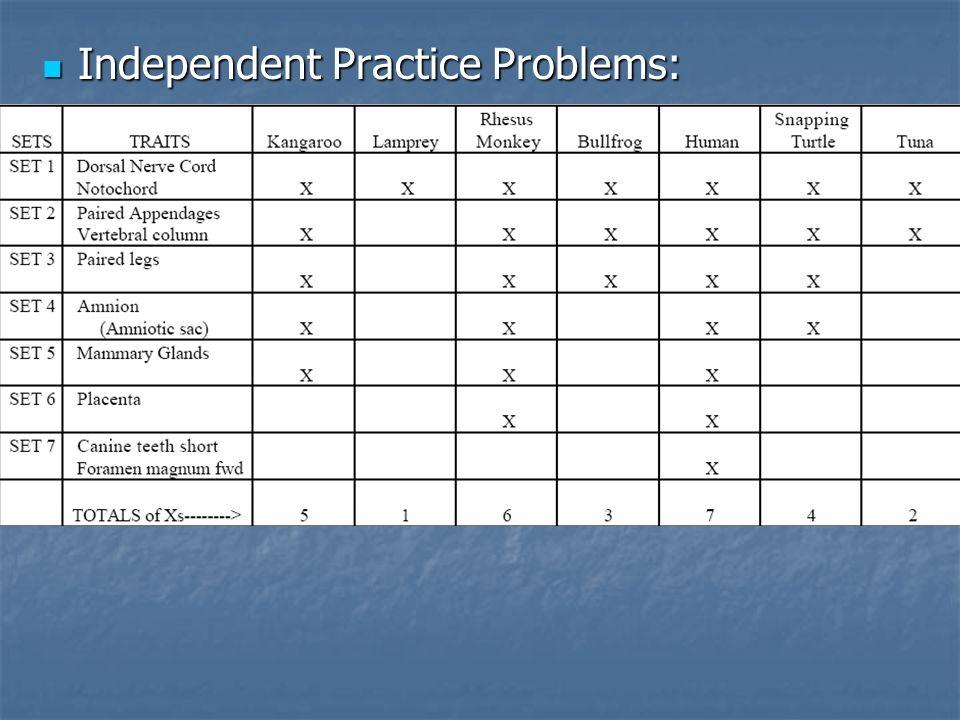 Independent Practice Problems: Independent Practice Problems: