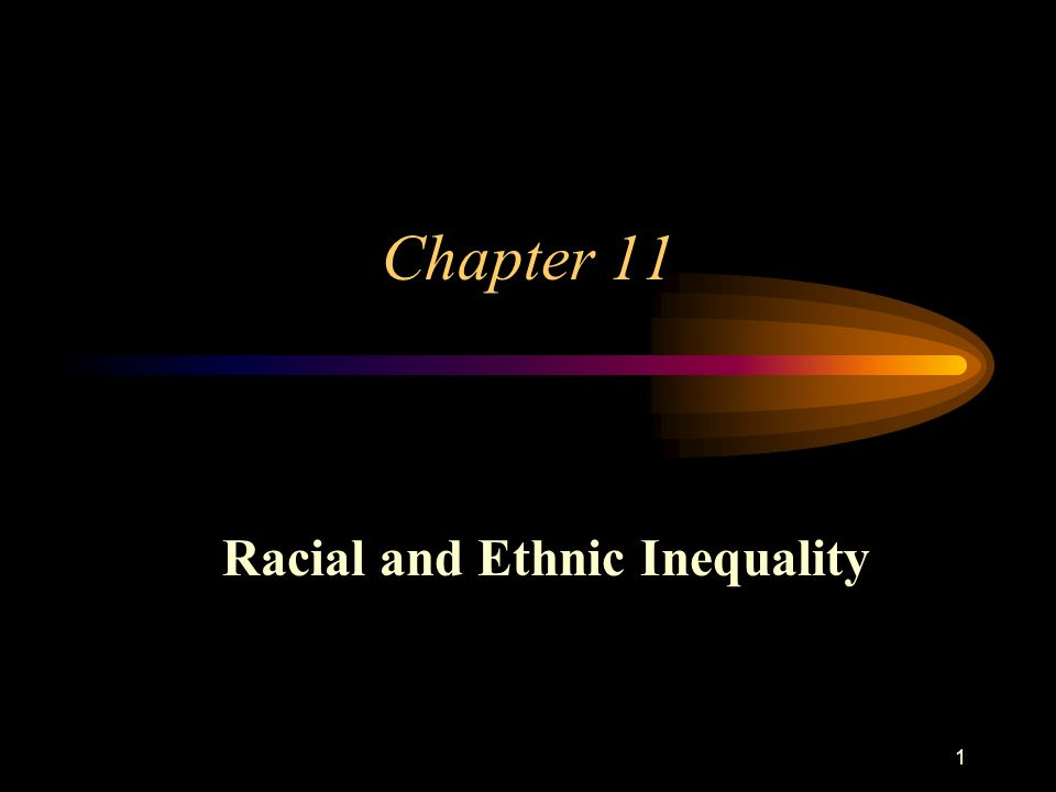 1 Chapter 11 Racial and Ethnic Inequality