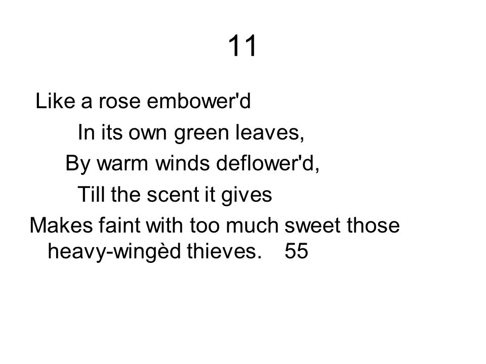 11 Like a rose embower'd In its own green leaves, By warm winds deflower'd, Till the scent it gives Makes faint with too much sweet those heavy-wingèd