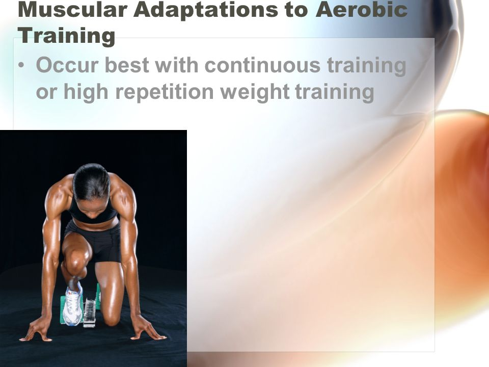 Muscular Adaptations to Aerobic Training Occur best with continuous training or high repetition weight training