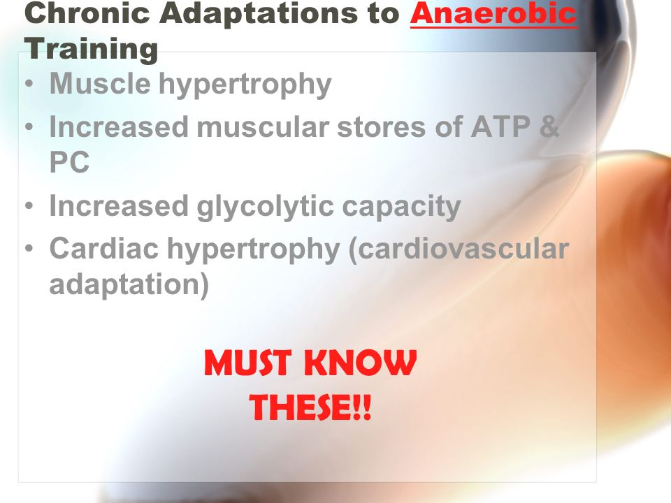 Chronic Adaptations to Anaerobic Training Muscle hypertrophy Increased muscular stores of ATP & PC Increased glycolytic capacity Cardiac hypertrophy (