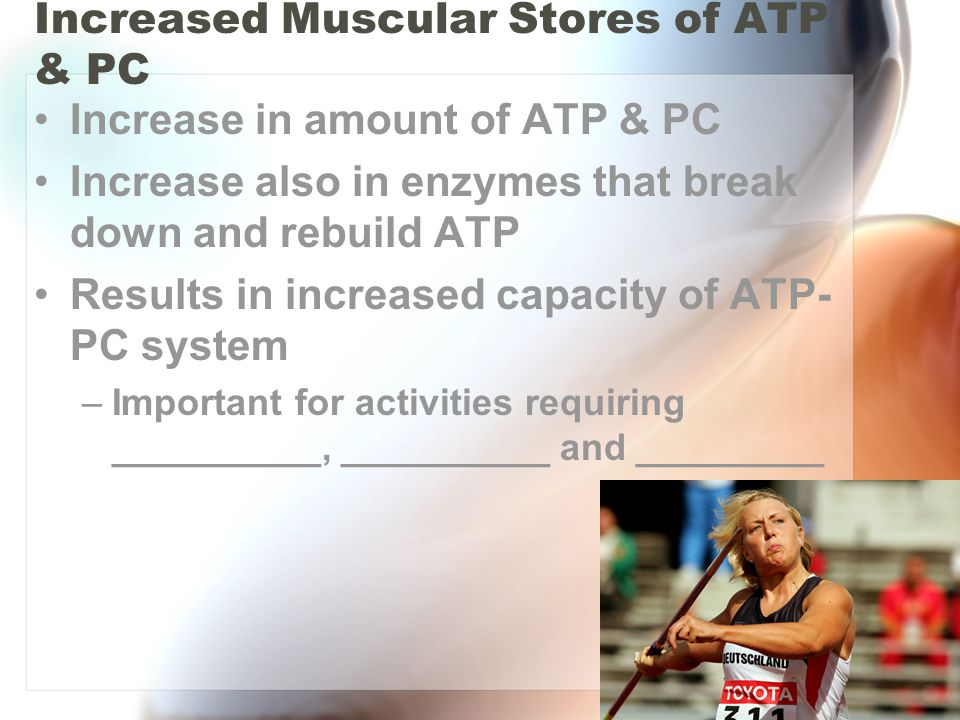 Increased Muscular Stores of ATP & PC Increase in amount of ATP & PC Increase also in enzymes that break down and rebuild ATP Results in increased cap