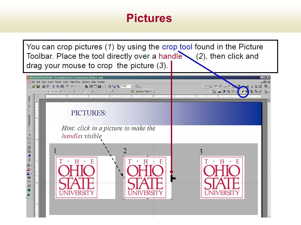 You can crop pictures (1) by using the crop tool found in the Picture Toolbar. Place the tool directly over a handle (2), then click and drag your mou