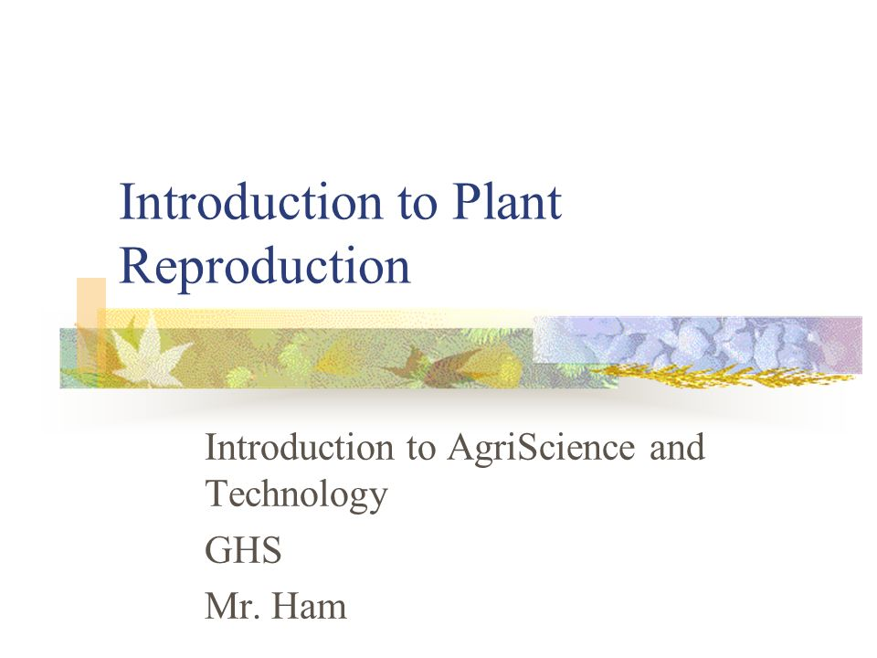 Introduction to Plant Reproduction Introduction to AgriScience and Technology GHS Mr. Ham