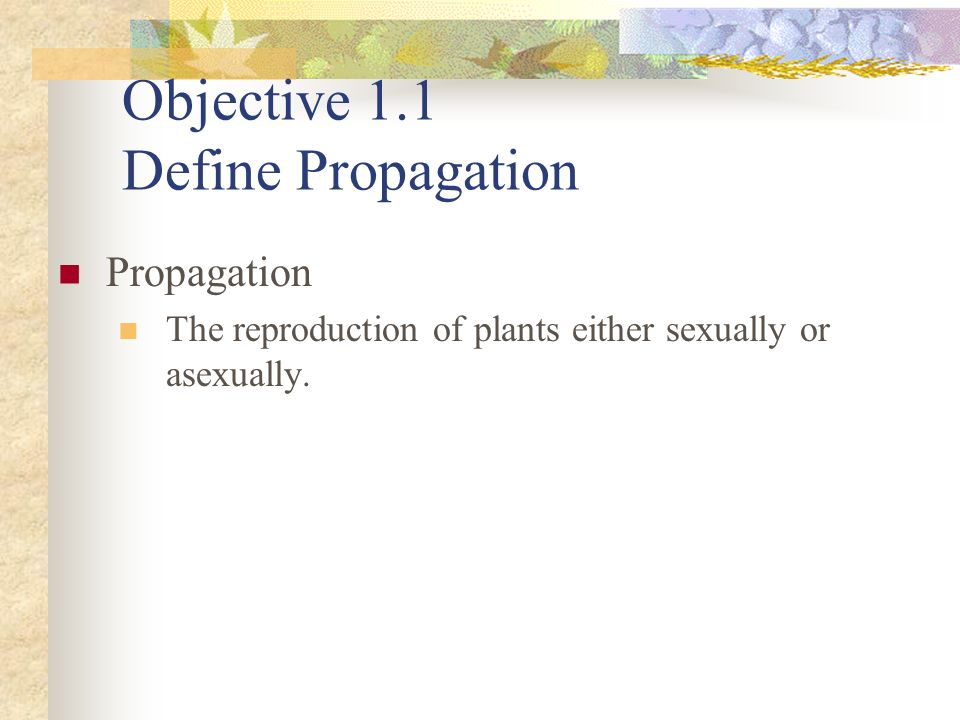 Objective 1.8 List the benefits of vegetative propagation.